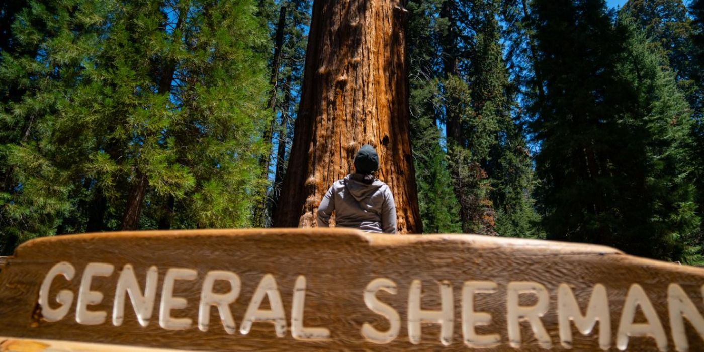 Discover The Best California State National Parks